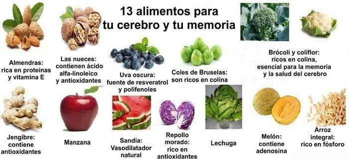Alimentos para el cerebro y la memoria alimentos para - Alimentos para la circulacion ...