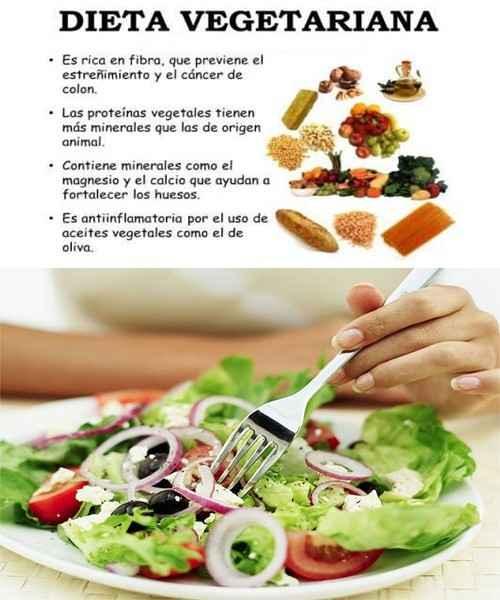 Alimentos y comida para vegetarianos