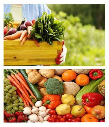 Los alimentos ecológicos