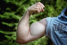 alimentacon-para-fortalecer-los-musculos