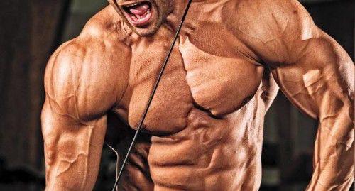 para masa muscular