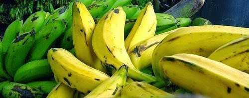 Alimentos para cortar la diarrea