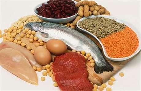 Los Alimentos para los músculos