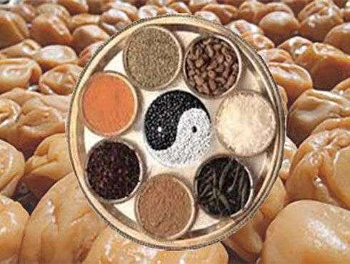 Alimentacíon y Alimentos Macrobioticos