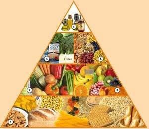 PIRÁMIDE DE ALIMENTACIÓN VEGANA Lista alimentos veganos