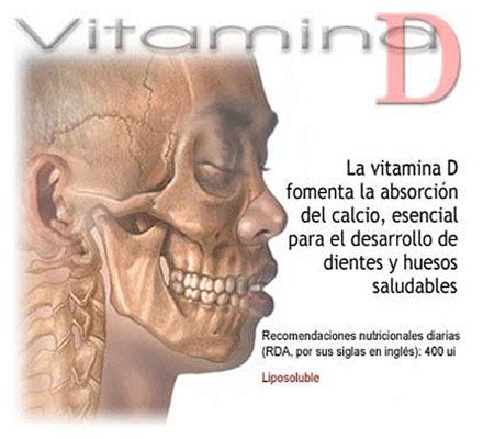 Alimentación beneficios alimentos que contienen vitamina d