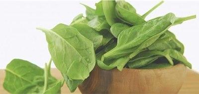 vegetales de hojas verdes alimentos para bienestar
