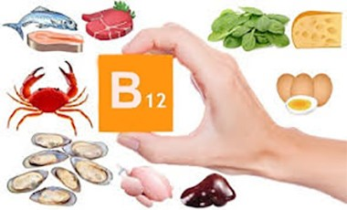 Alimentos con vitamina b12 alimentos - Alimentos vitaminas b ...