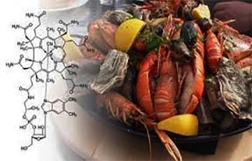 Los Alimentos que contienen más Vitamina B12