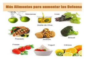Alimentos para una buena alimentaci n todo lo que debes - Alimentos para subir las defensas ...